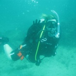 2d Buffy Diving
